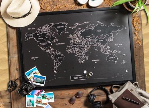 World Travels PinMaps